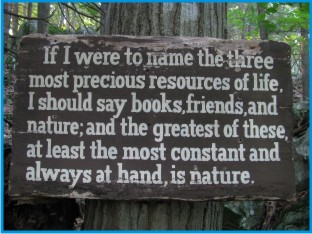 John Burroughs's quote #7