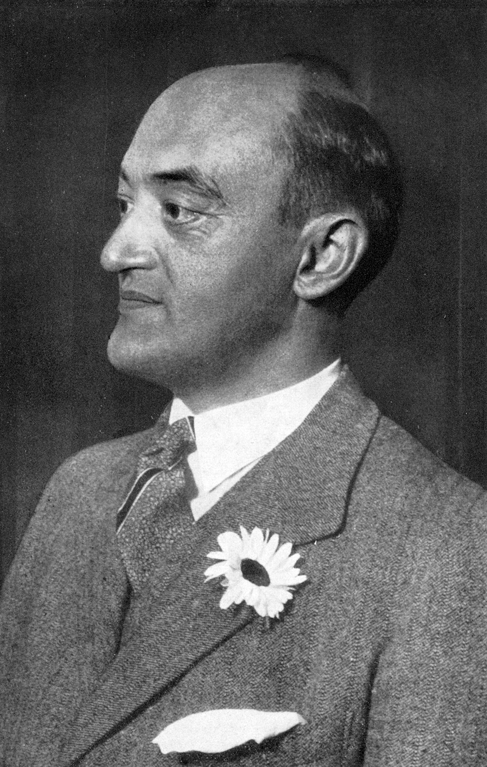 analysis of joseph a schumpeter's A much-needed modern interpretation of joseph schumpeter's views on  which  provides a comprehensive and detailed analysis of this great thinker's major.
