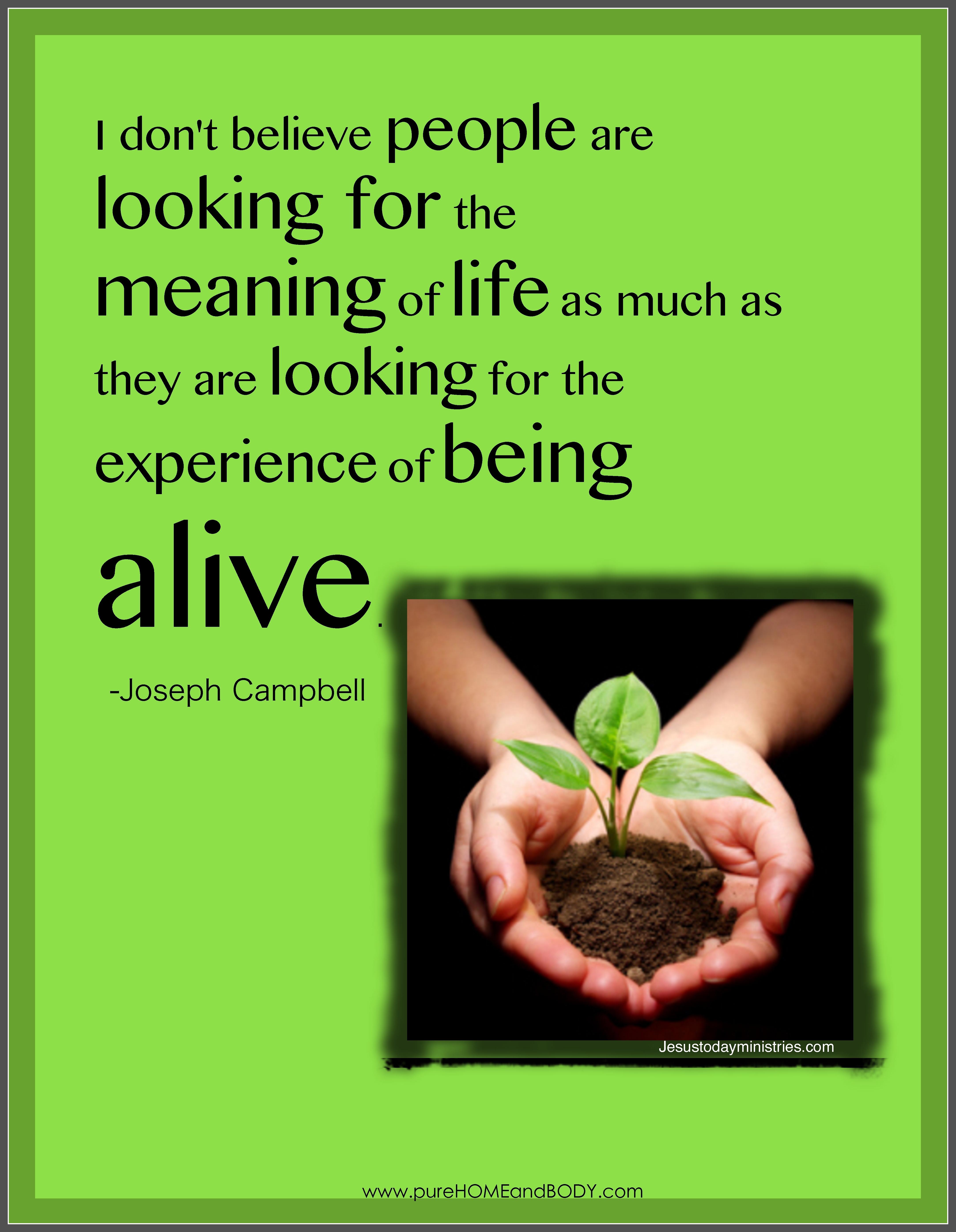 Joseph Campbell's quote #7