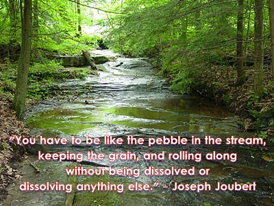 Joseph Joubert's quote #4