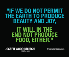 Joseph Wood Krutch's quote #6