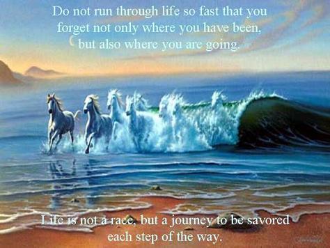 Journey quote #8