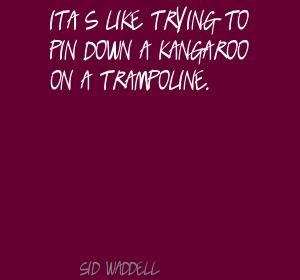 Kangaroo quote