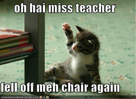 Kitten quote #1