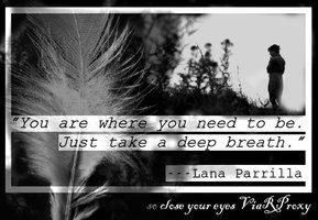 Lana Parrilla's quote #7