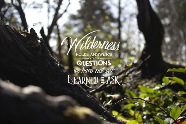 Landscape quote #4