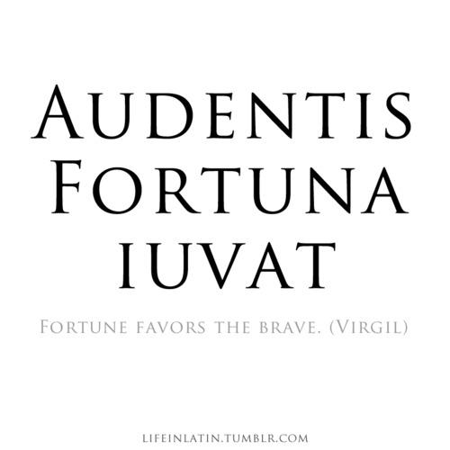 Latin quote #3