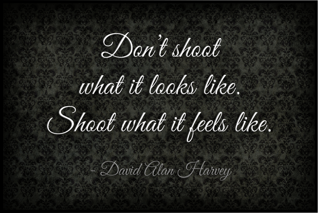 Lens quote #1