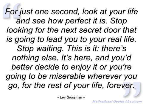 Lev Grossman's quote #6
