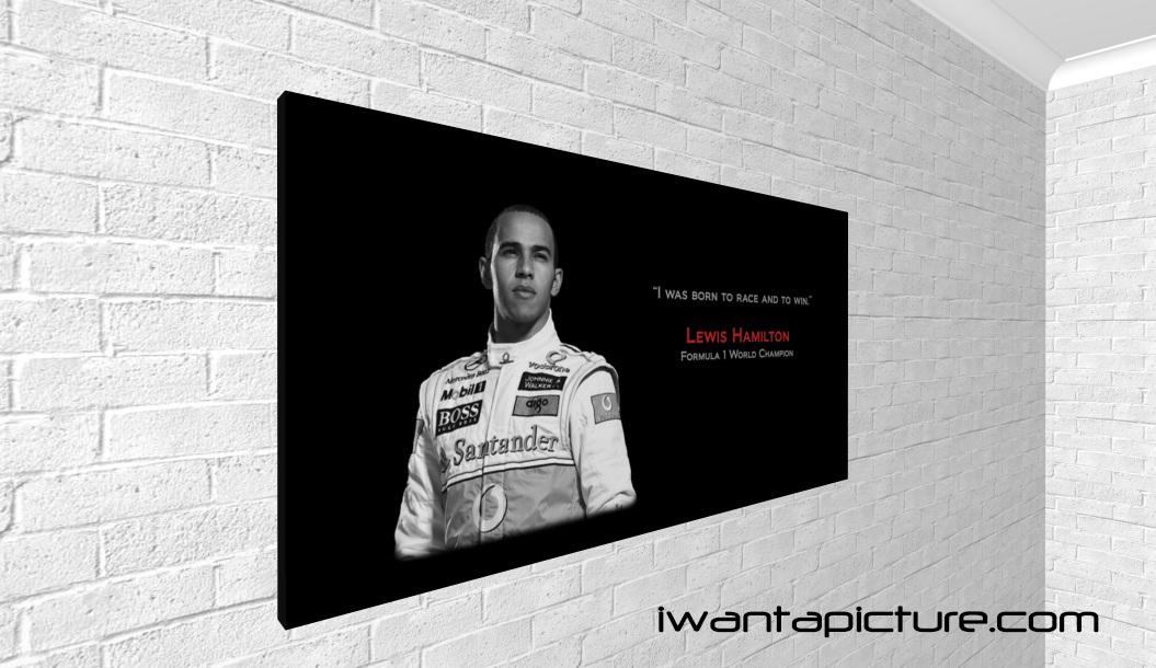 Lewis Hamilton's quote #3