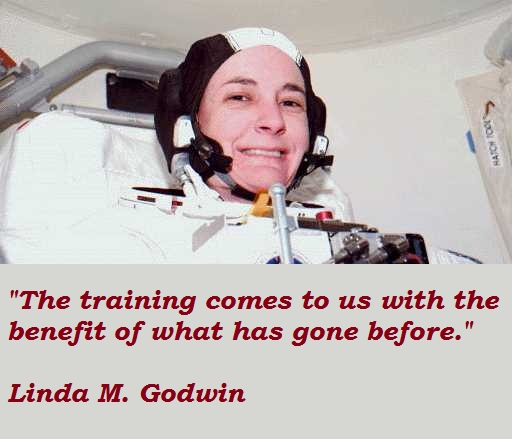 Linda M. Godwin's quote #4