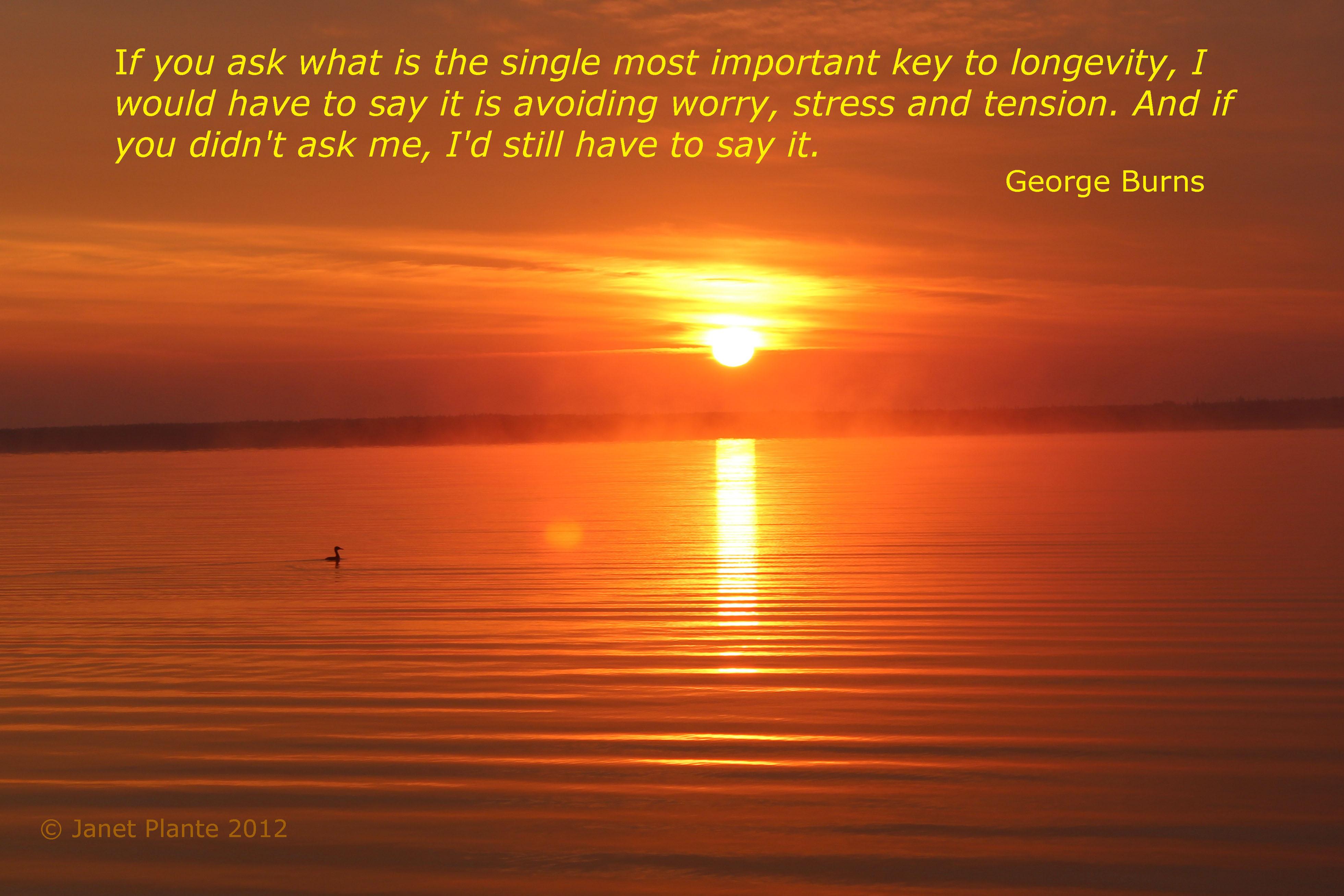 Longevity quote #7