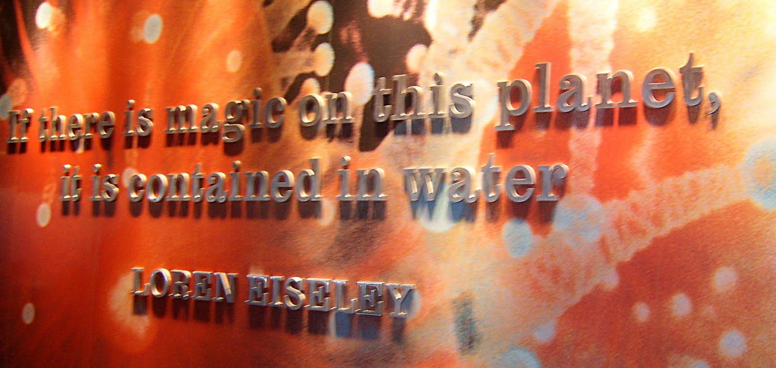 Loren Eiseley's quote #2