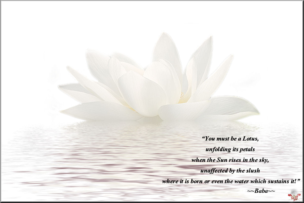 Famous Quotes About 'Lotus'