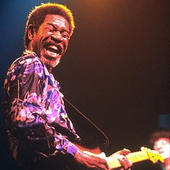 Luther Allison's quote #2