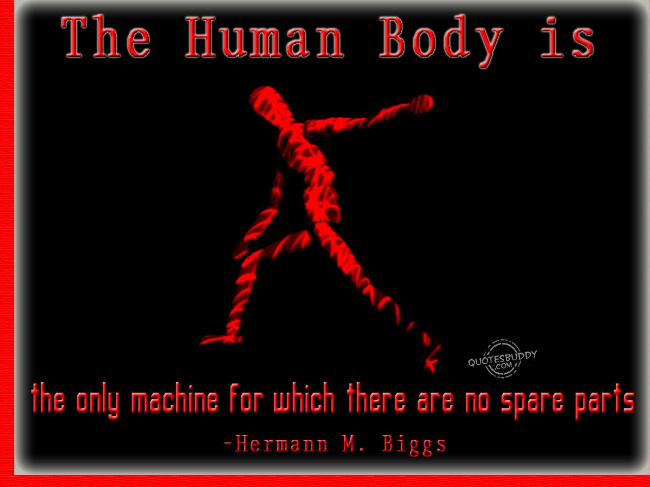 Machine quote #7