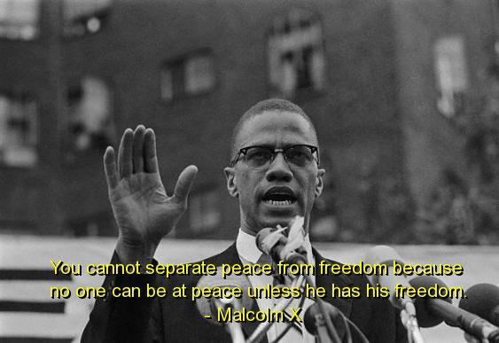Malcolm quote #2