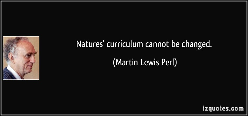 Martin Lewis Perl's quote #5