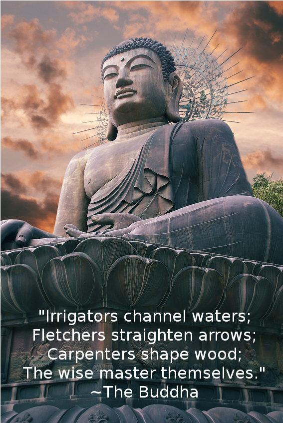Master quote #6