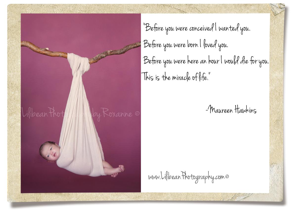 Maureen quote #2