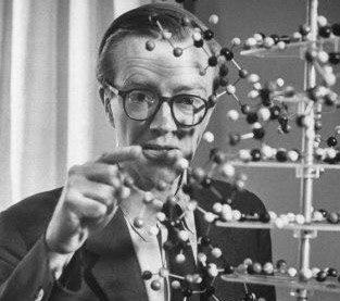 maurice wilkins Maurice wilkins's wiki: maurice hugh frederick wilkins cbe frs (15 december 1916 - 5 october 2004)[25] was a new zealand-born british physicist and molecular biologist, and nobel laureate whose research contributed to the scientific understanding of phosphorescence, isotope sepa.