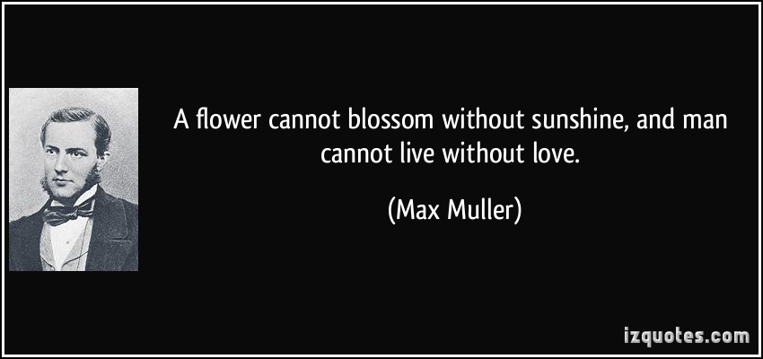 Max Muller's quote #5
