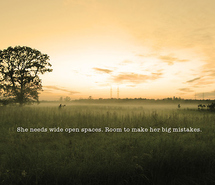 Meadow quote #2