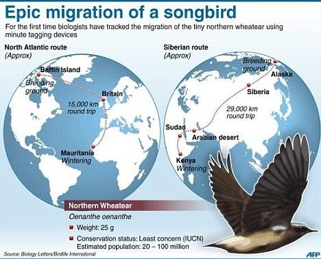 Migrate quote #1