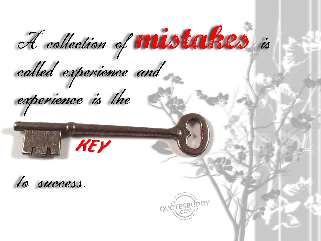 Mistake quote #4