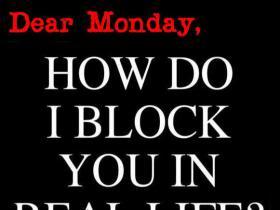 Monday quote #3