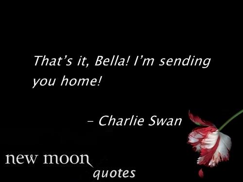 Moon quote #4