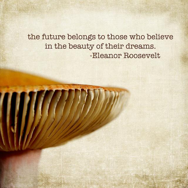 Mushrooms quote #2