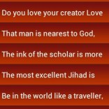 Muslim World quote #2