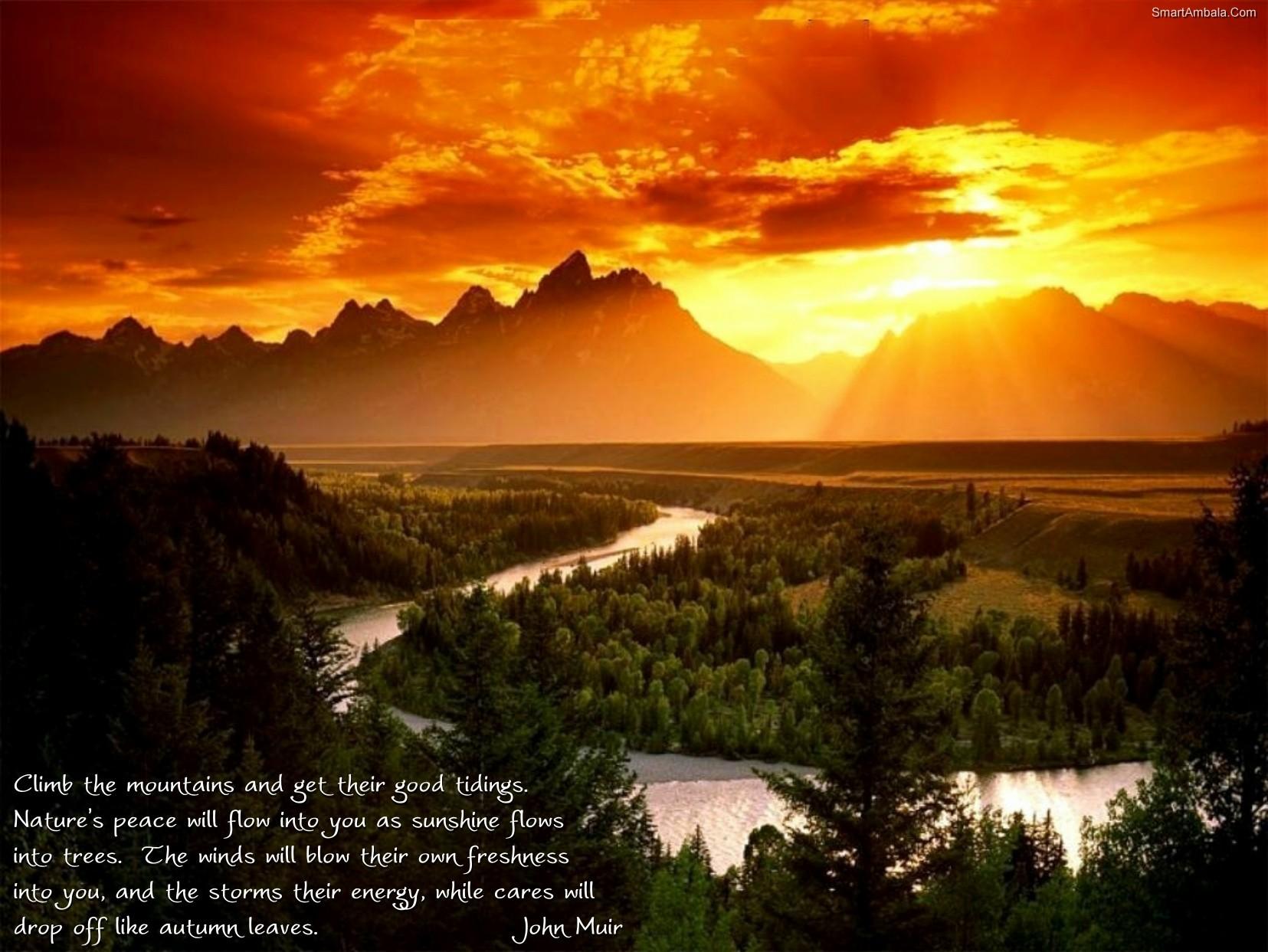 Nature quote #6