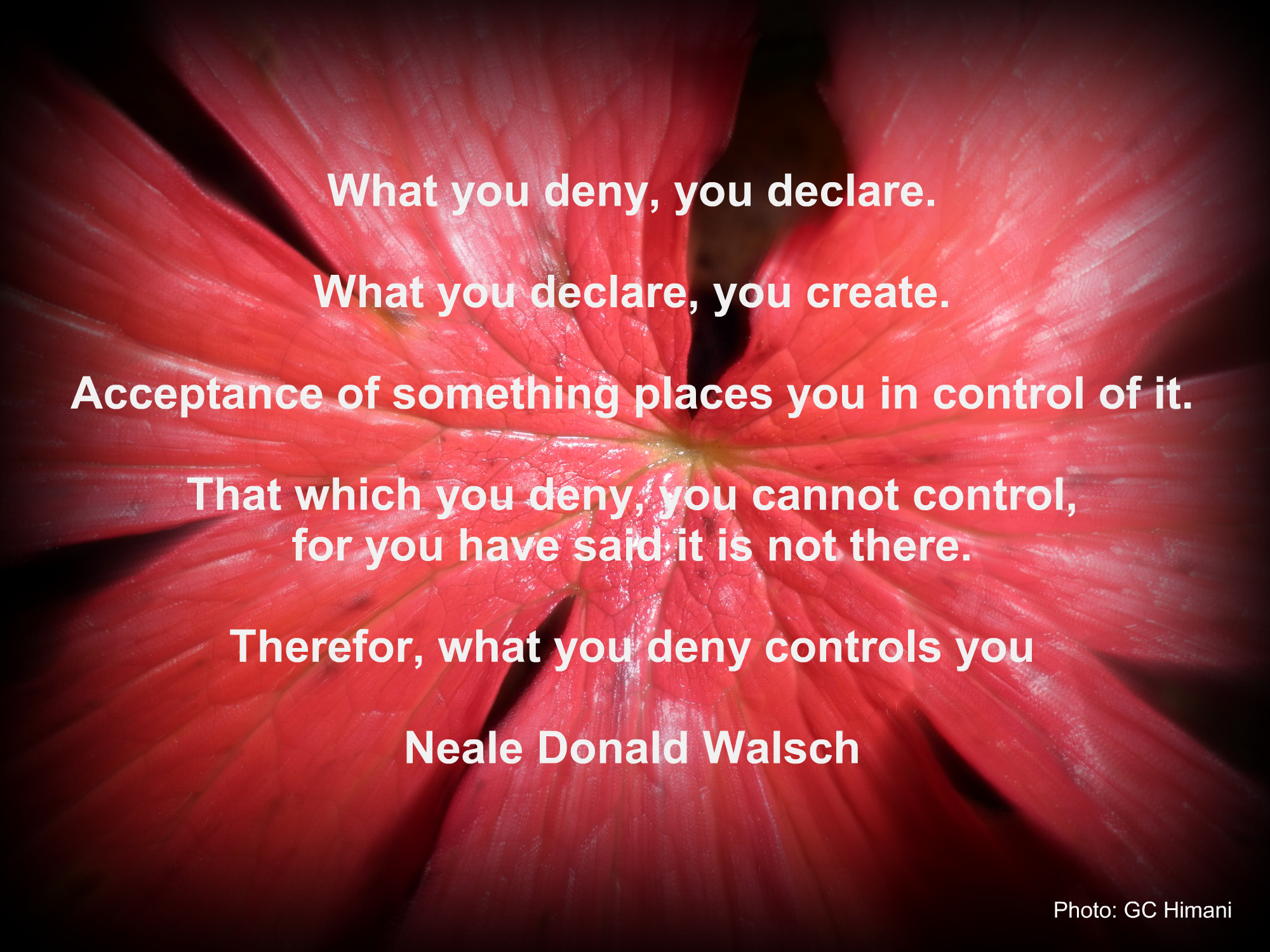 Neale Donald Walsch's quote #1