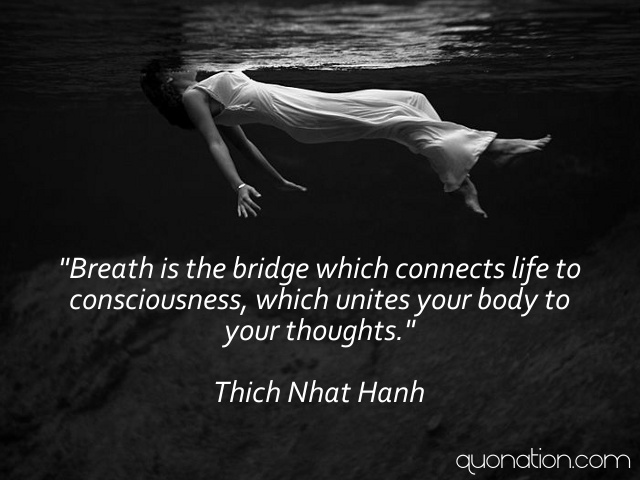 Nhat Hanh's quote #4