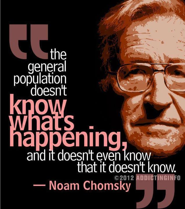 Noam Chomsky's quote #3