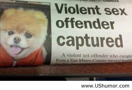 Offender quote #1