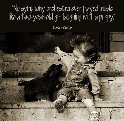 Orchestra quote #3