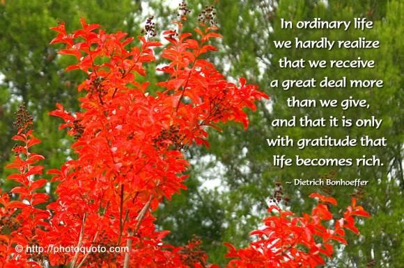 Ordinary Life quote #1