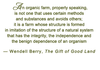 Organic quote #2
