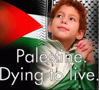 Palestine quote #2