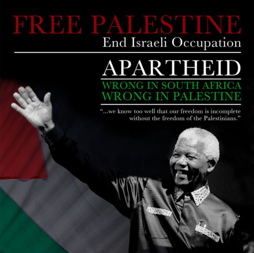 Palestine quote #6