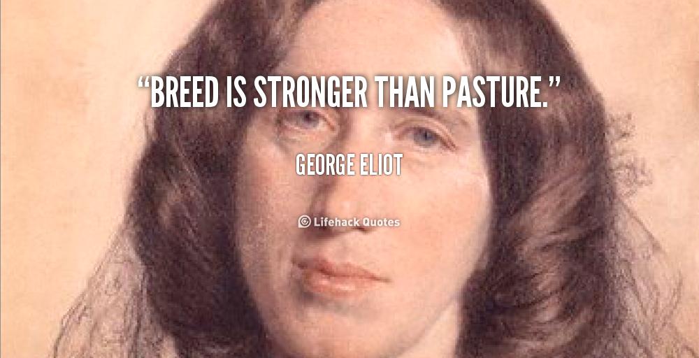 Pasture quote #1
