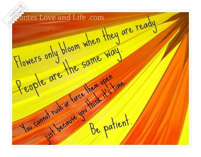 Patient quote #5