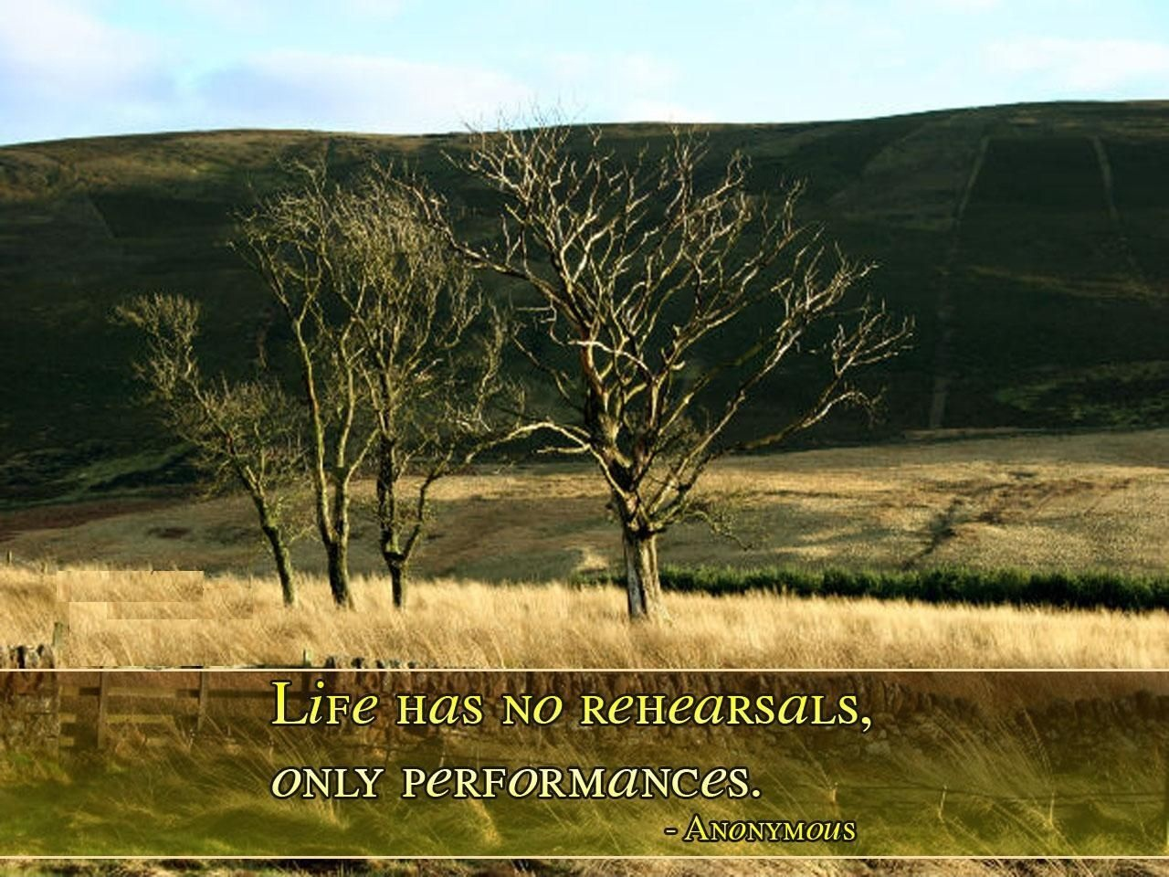 Performances quote #2