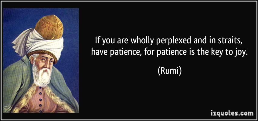 Perplexed quote