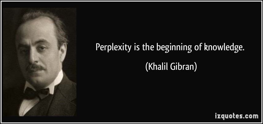 Perplexity quote #1