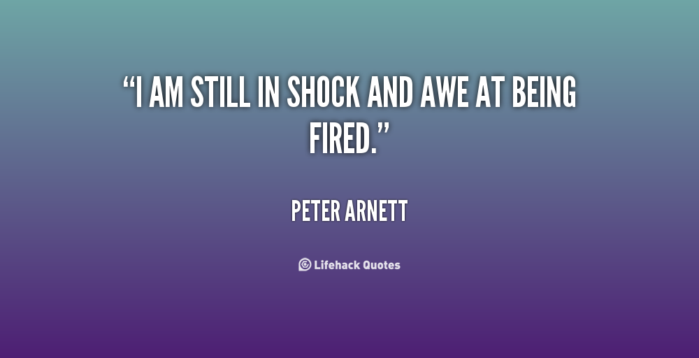 Peter Arnett's quote #3