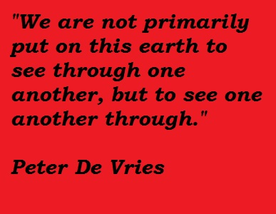Peter De Vries's quote #5